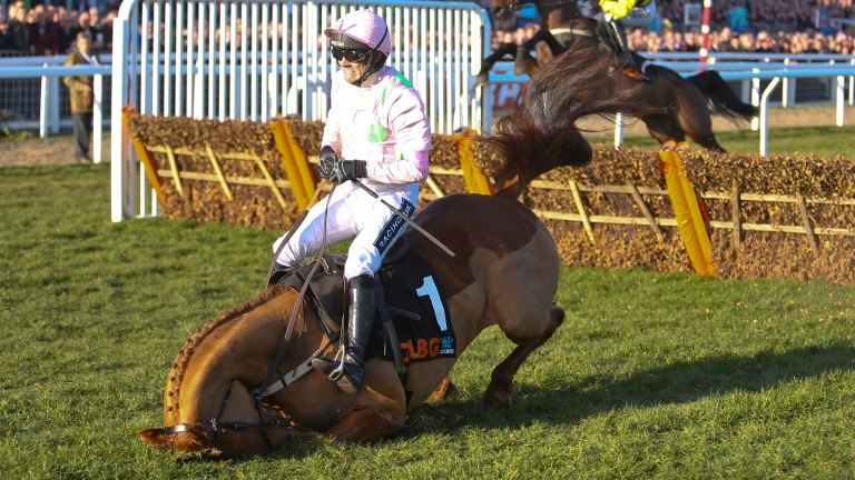 Annie Power crashes out under Ruby Walsh in the 2015 OLBG Mares' Hurdle
