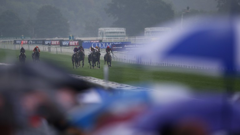 It could be wet on the Knavesmire on Wednesday