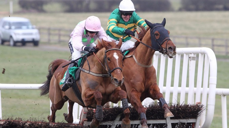 Annie Power holds off Defy Logic to win Grade 2 at Naas