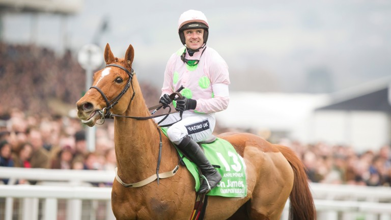 Job done: Annie Power wins the 2016 Champion Hurdle