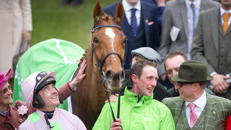 The look of love: Ruby Walsh gazes at Champion Hurdle winner Annie Power