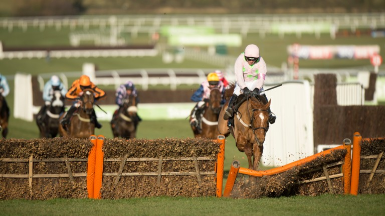 Annie Power hits the final hurdle before her infamous fall in the OLBG Mares' Hurdle at Cheltenham