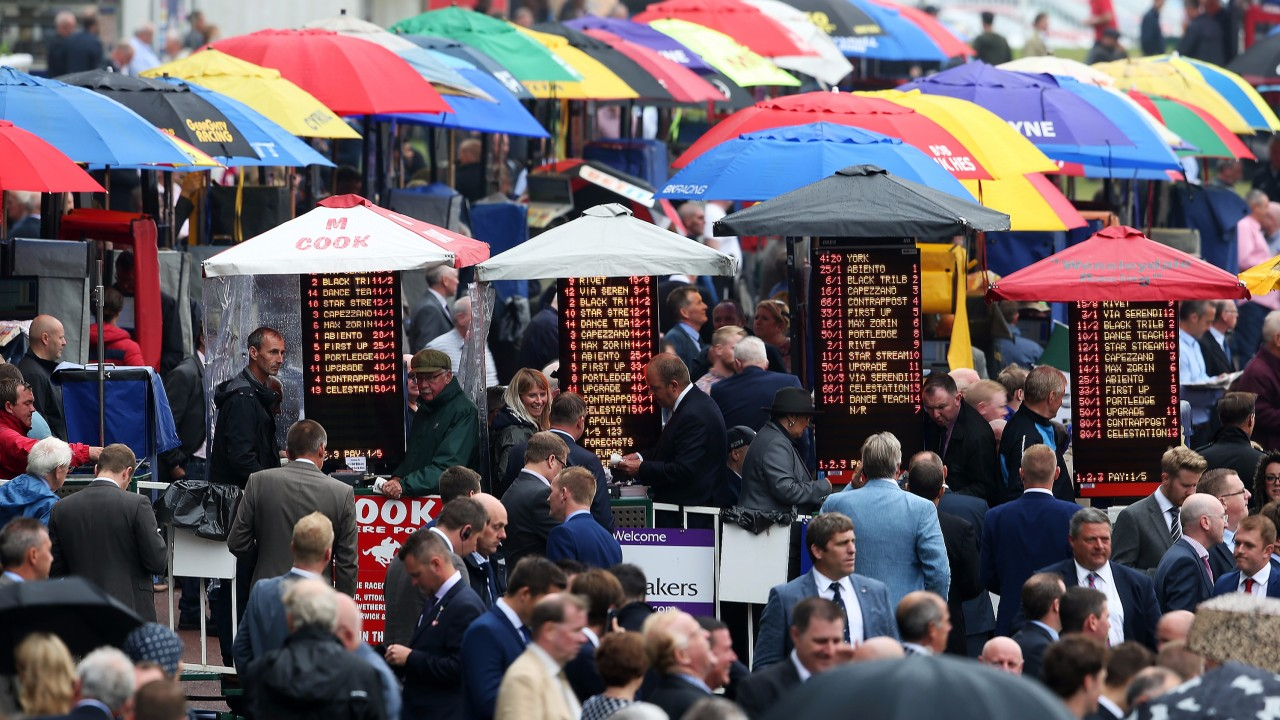 Saturday free racing tips: our experts give you their best bets of