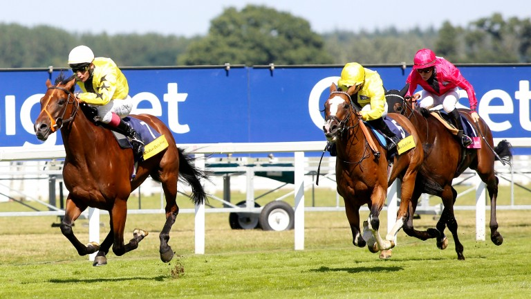 Gavin Lerena: steered Danehill Kodiac (left) to victory at the Shergar Cup last year, securing a double on the day