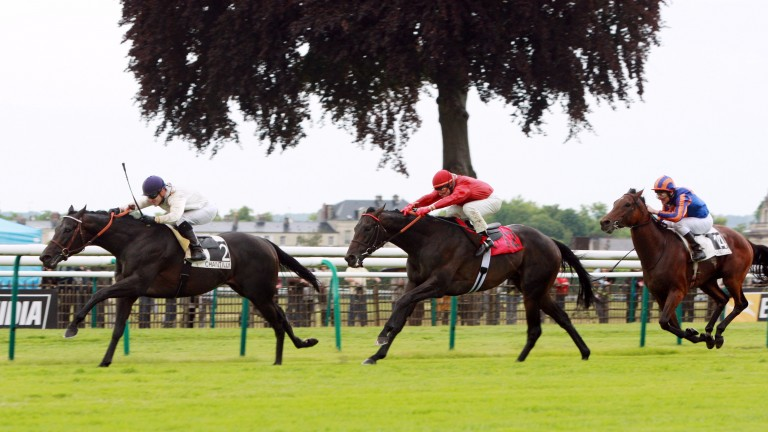 Le Havre (no 2) had a month to recover from his exertions in the Poule d'Essai des Poulains before winning the Prix du Jockey Club in 2009