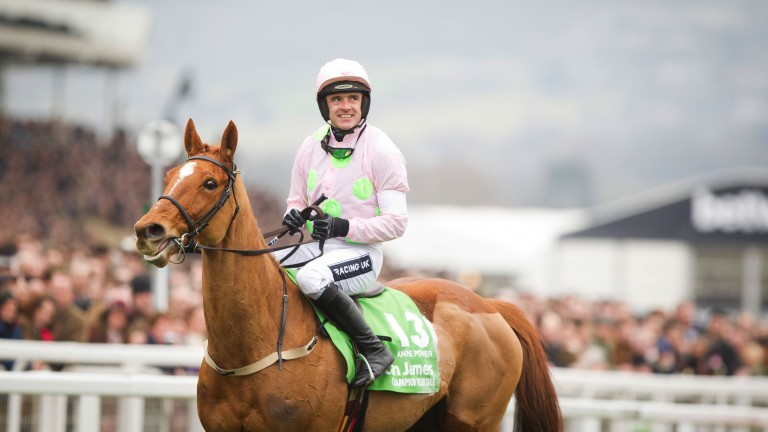 Annie Power: the brilliant jumps mare was retired on Tuesday