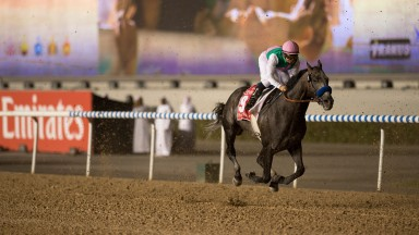 Arrogate: the latest star to be born in April