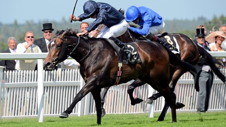 Curvy (navy) became the third Royal Ascot winner out of Frappe when landing the 2015 Ribblesdale Stakes