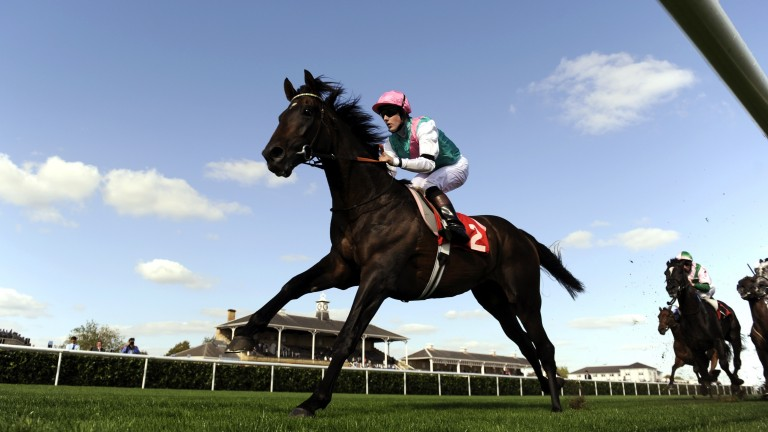 Twice Over: won back-to-back editions of the Champion Stakes