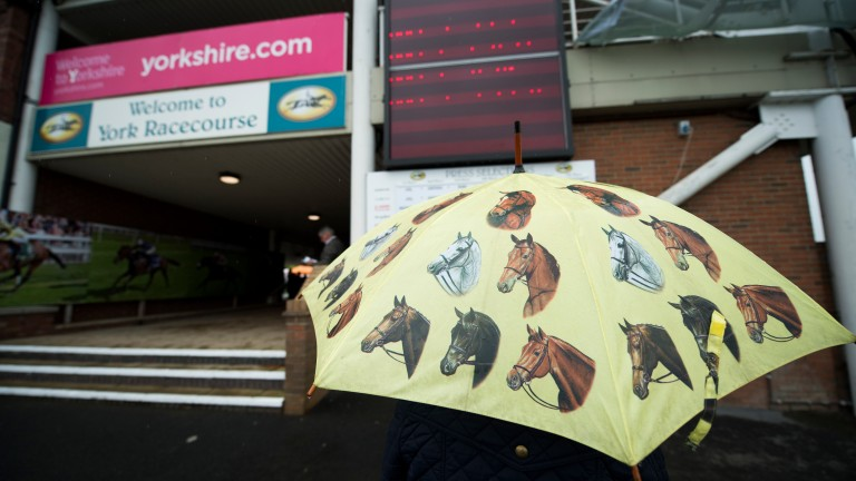 Sticking to the theme: a racegoer arrives with an appropriately decorated brolly