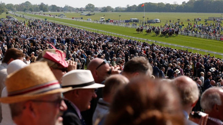 York: going eases on Yorkshire Cup card