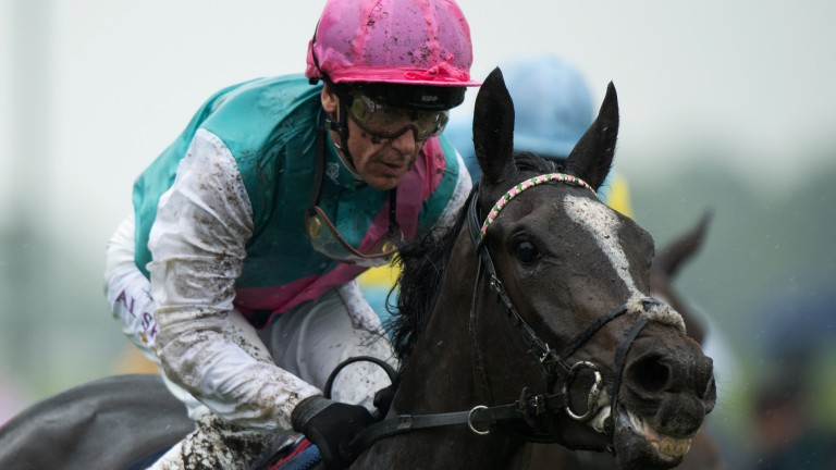 Ears pricked: Shutter Speed passes the post in front under Frankie Dettori in the Musidora Stakes