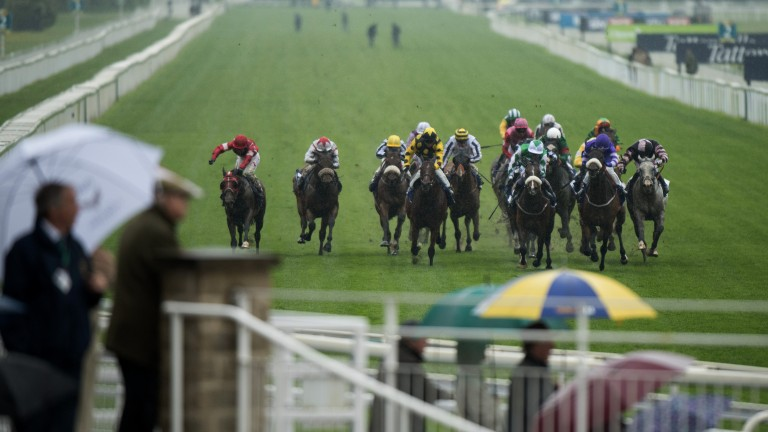 Approaching the winning post: 16 runners tackle the testing conditions in the 6f handicap, won by Al Qahwa