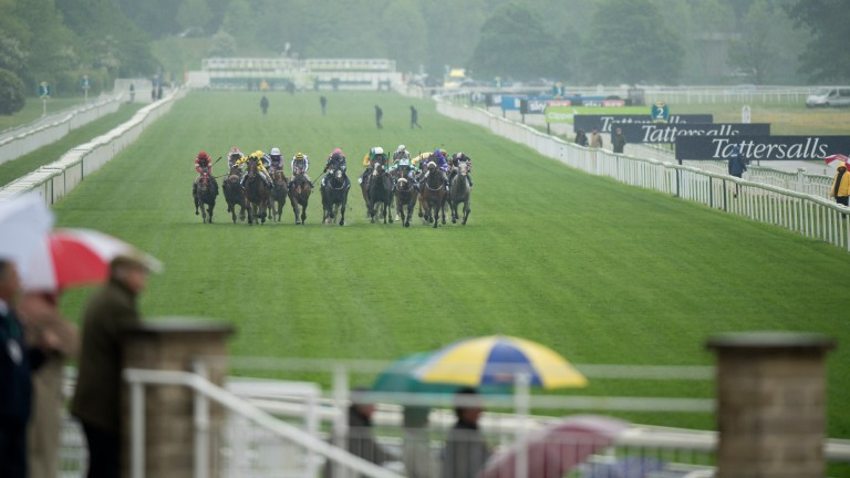 The going at York eased on Wednesday after significant rain