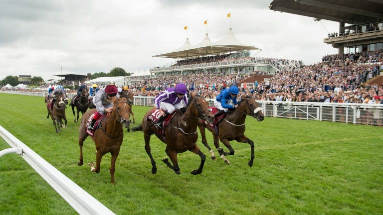 Galileo Gold (left) and Ribchester (right) are set to face off again in the Lockinge on Saturday