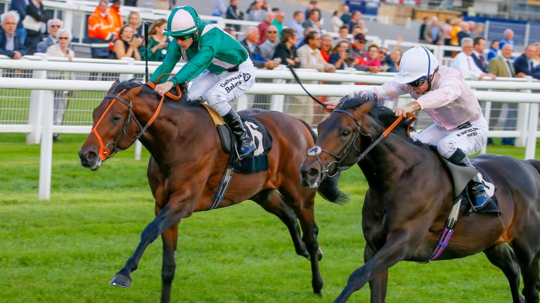 Raheen House (green silks): Royal Ascot on agenda after Goodwood