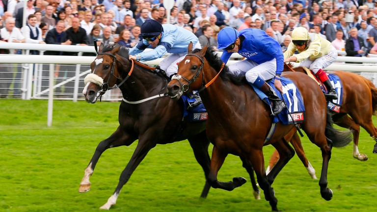 Dead Heat for first No17 Memorial Day - James Doyle and Libran  - Ben CurtisThe Sky Bet First Race Special Stakes (Handicap)York 21/8/2015©Cranhamphoto.com