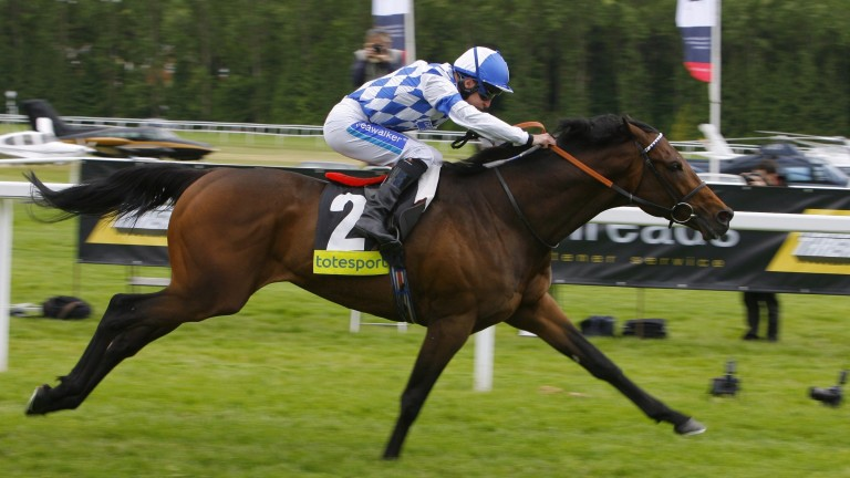 Subsequent four-time Group 1 winner Al Kazeem won the London Gold Cup in 2011
