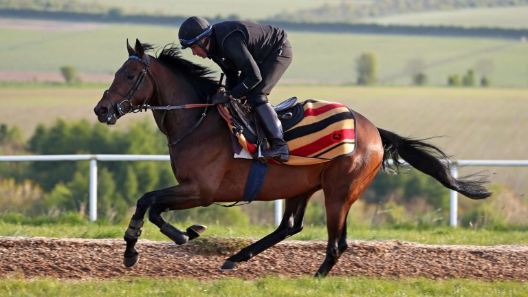 My Dream Boat, partnered by Stuart Shilston, works at Clive Cox's Lambourn yard