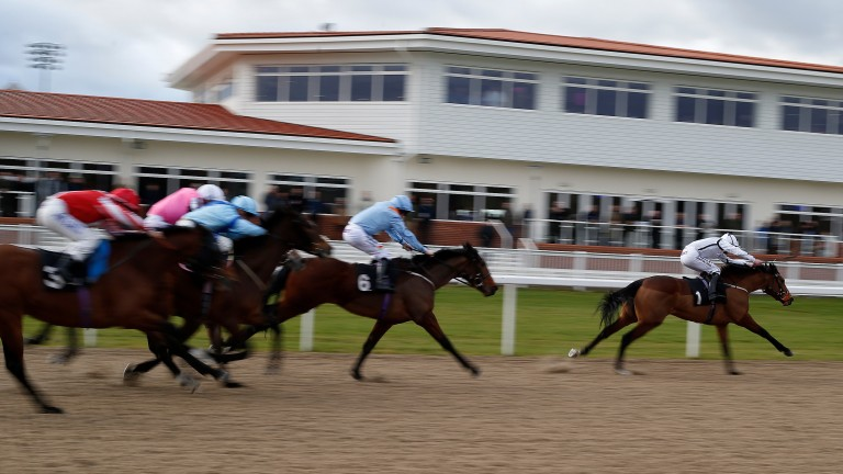 Nautical Haven: an easy winner at Chelmsford but the race was voided