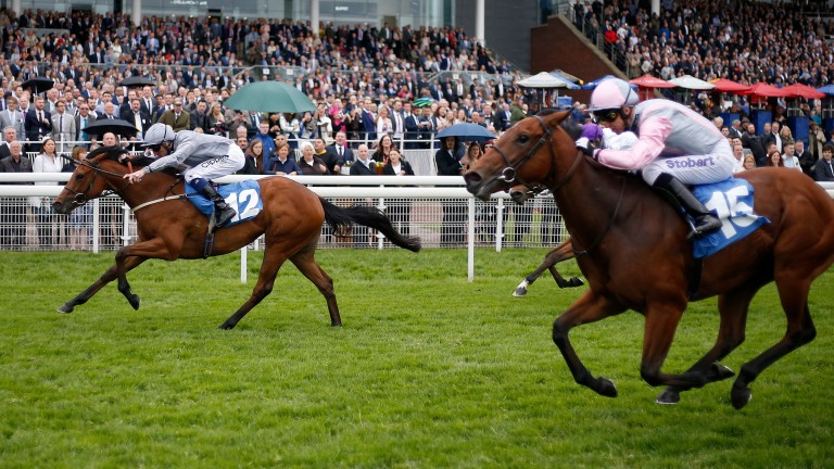 Main Desire and Daniel Tudhope (left) land the Listed Marygate Fillies' Stakes