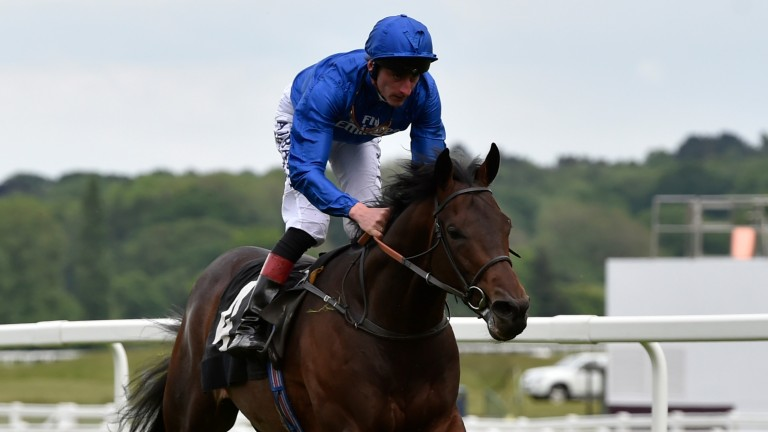 Dubai Thunder: eye-catching performance on his debut at Newbury on Friday