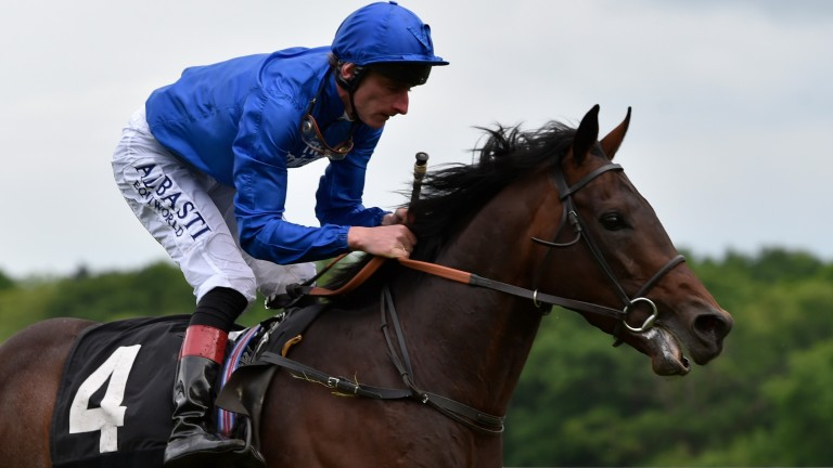 Dubai Thunder: holds an entry for the Investec Derby in two weeks' time