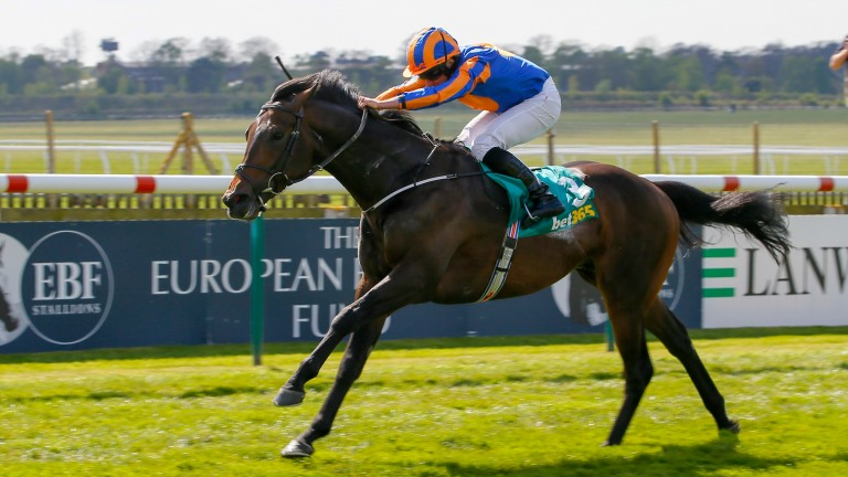 Whitecliffsofdover: sets a very high standard in the Owenstown Stud Stakes