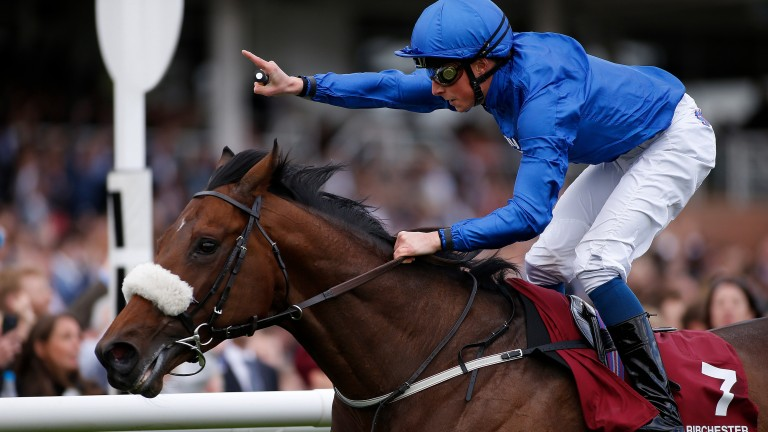 Ribchester: leading the charge of future Darley sires at Royal Ascot