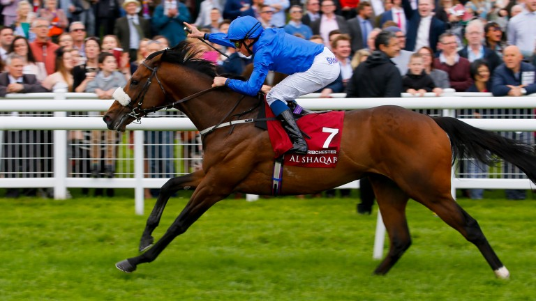 Ribchester: might not face much competition at a mile