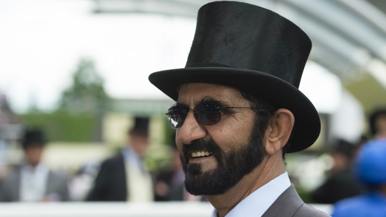 "Sheikh Mohammed: briefed his buying team to source ""nice horses"" at last year's yearling sales"