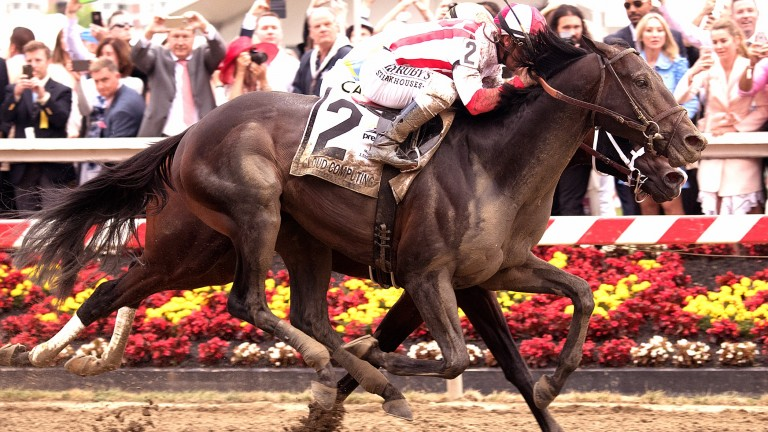 Cloud Computing (Javier Castellano): ended Triple Crown dreams with surprise victory in the Preakness Stakes