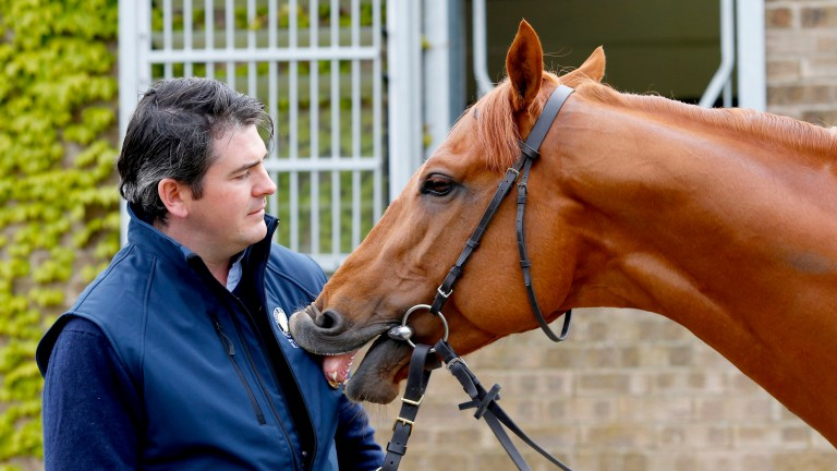 Trainer Hugo Palmer at home with Galileo Gold
