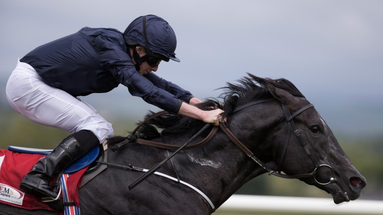 Caravaggio is expected to face a big test against Harry Angel in Friday's Commonwealth Cup