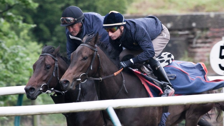 Gerald Mosse riding exercise for trainer Jeremy Noseda in Newmarket
