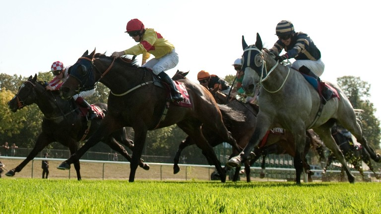 Tom Eaves wins the Abbaye on Tangerine Trees (centre) in 2011 - now he can add another French Group 1 to his CV