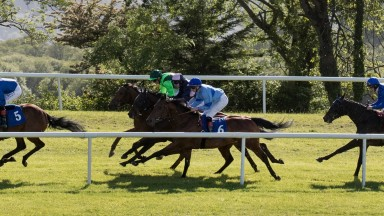 Nigg Bay (No.6) has excellent claims of improving on last week's Killarney effort