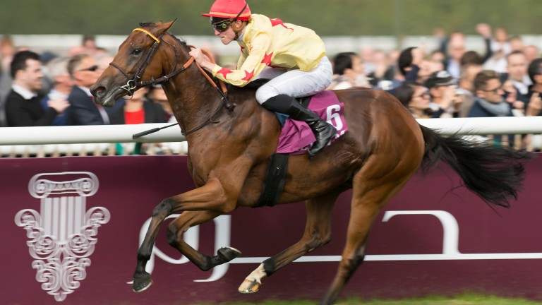National Defense disappointed in the Poule d'Essai des Poulains but Criquette Head-Maarek retains faith in the son of Invincible Spirit