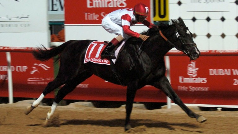 Roses In May: son of Devil His Due wins the 2005 Dubai World Cup at Nad Al Sheba