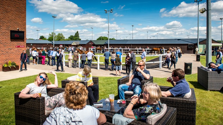 The scene at the Goffs UK Doncaster complex during a vibrant day of trade at the Spring Store Sale