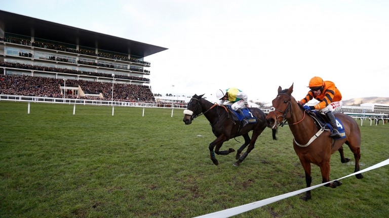 CHELTENHAM, ENGLAND - JANUARY 28:   Leighton Aspell riding Many Clouds (L, yellow/green) clear the last to win The BetBright Trial Cotswold Steeple Chase from Thistlecrack (orange) at Cheltenham Racecourse on January 28, 2017 in Cheltenham, England. (Phot