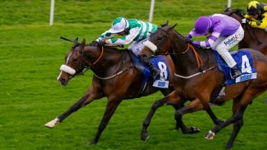 Muntadab (purple), second at York last week, has progressed with each run over 6f