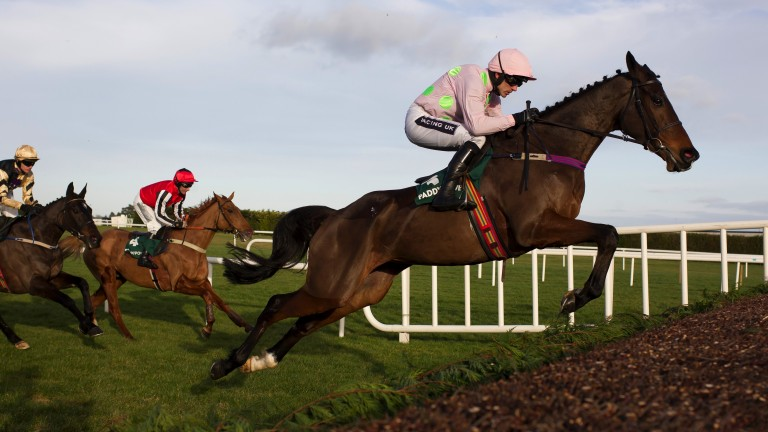 Douvan (rated 174): his comfortable defeat of Sizing John at Leopardstown was rated the best performance of any horse during the 2016-17 season