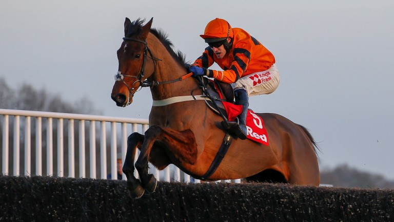 Thistlecrack (170): the King George hero was the highest-rated staying novice chaser
