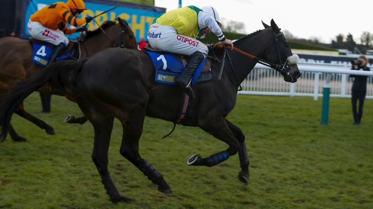 Buveur D'Air (169): the Champion Hurdle hero justified the decision to shelve a novice chase campaign