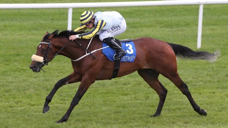 Irishcorrespondent: has been sold to race in Hong Kong