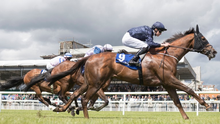 Acapulco and Donnacha O'Brien sprint to victory in the Sole Power Sprint Stakes