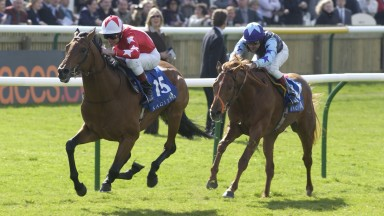 Horseracing Newmarket May 2002 Rock Of Gibraltar wins the 2000 Guineas from Redback Mirrorpix