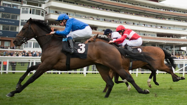 Gold Town (William Buick) wins his maiden at Newbury