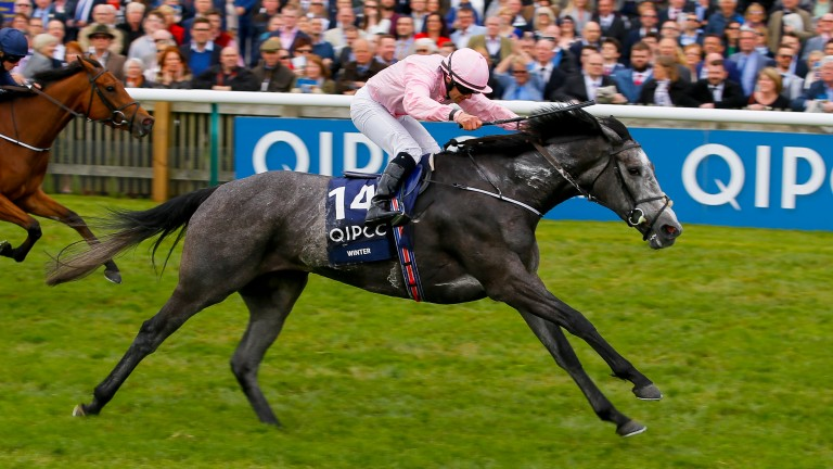 Winter runs away with the Qipco 1,000 Guineas at Newmarket under Wayne Lordan